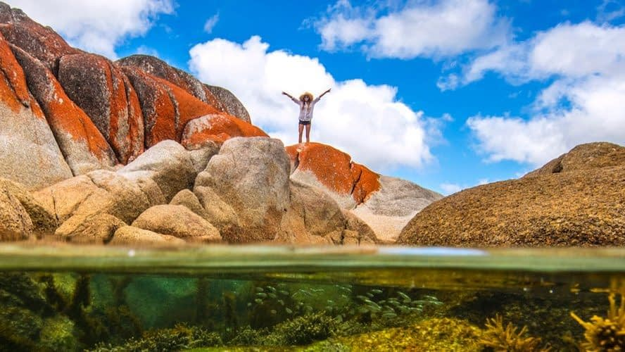 What Couples, Friends, & Families Can Enjoy in Tasmania